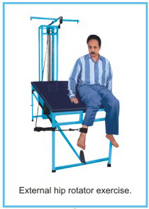 imico exercise chair suppliers in delhi, imico exercise chair suppliers in india, imico exercise chair manufacturers in delhi, imico exercise chair manufacturers in india
